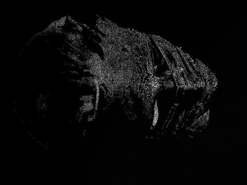 Το Κεφάλι / The head