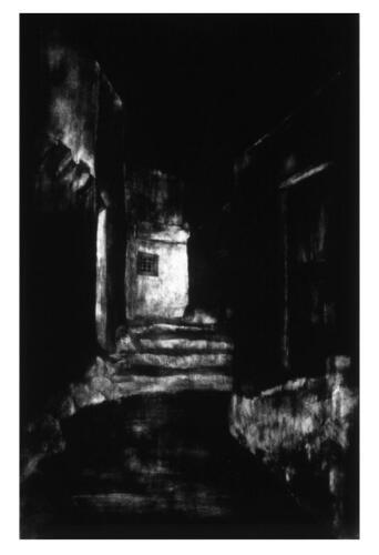 Copy of Σινιόσογλου Αμαρυλίς No 62